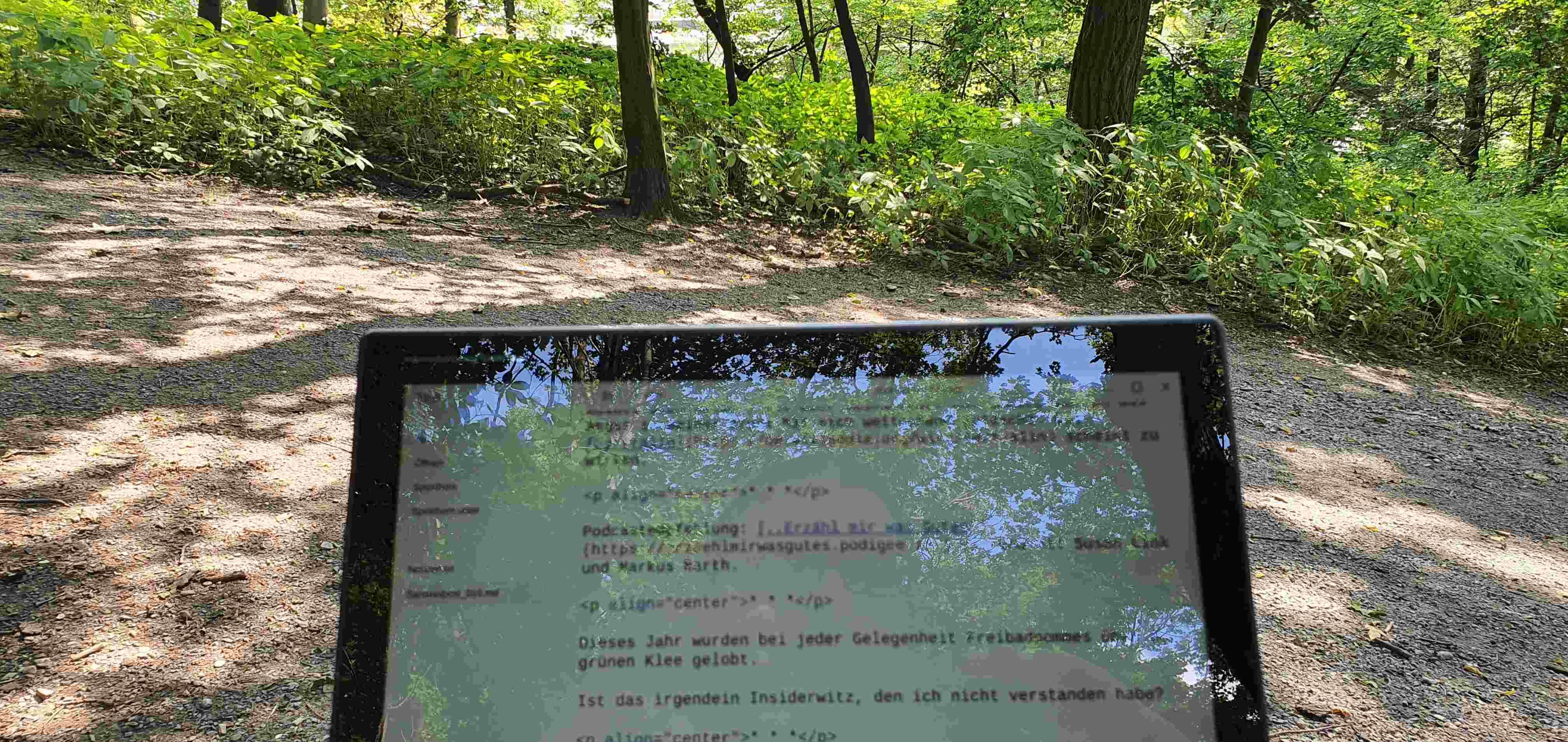 Bloggen im Wald