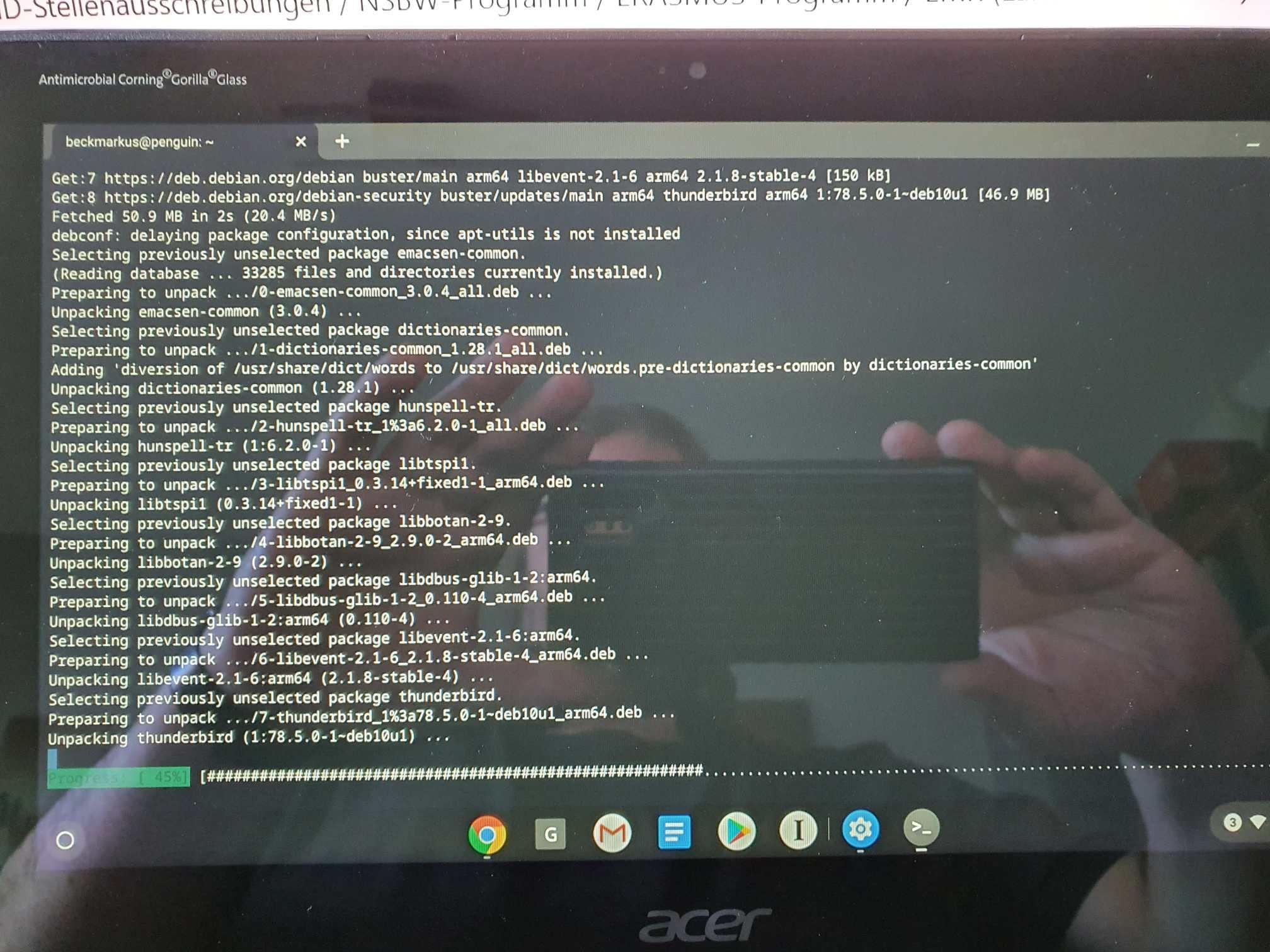 Linux auf dem Chromebook