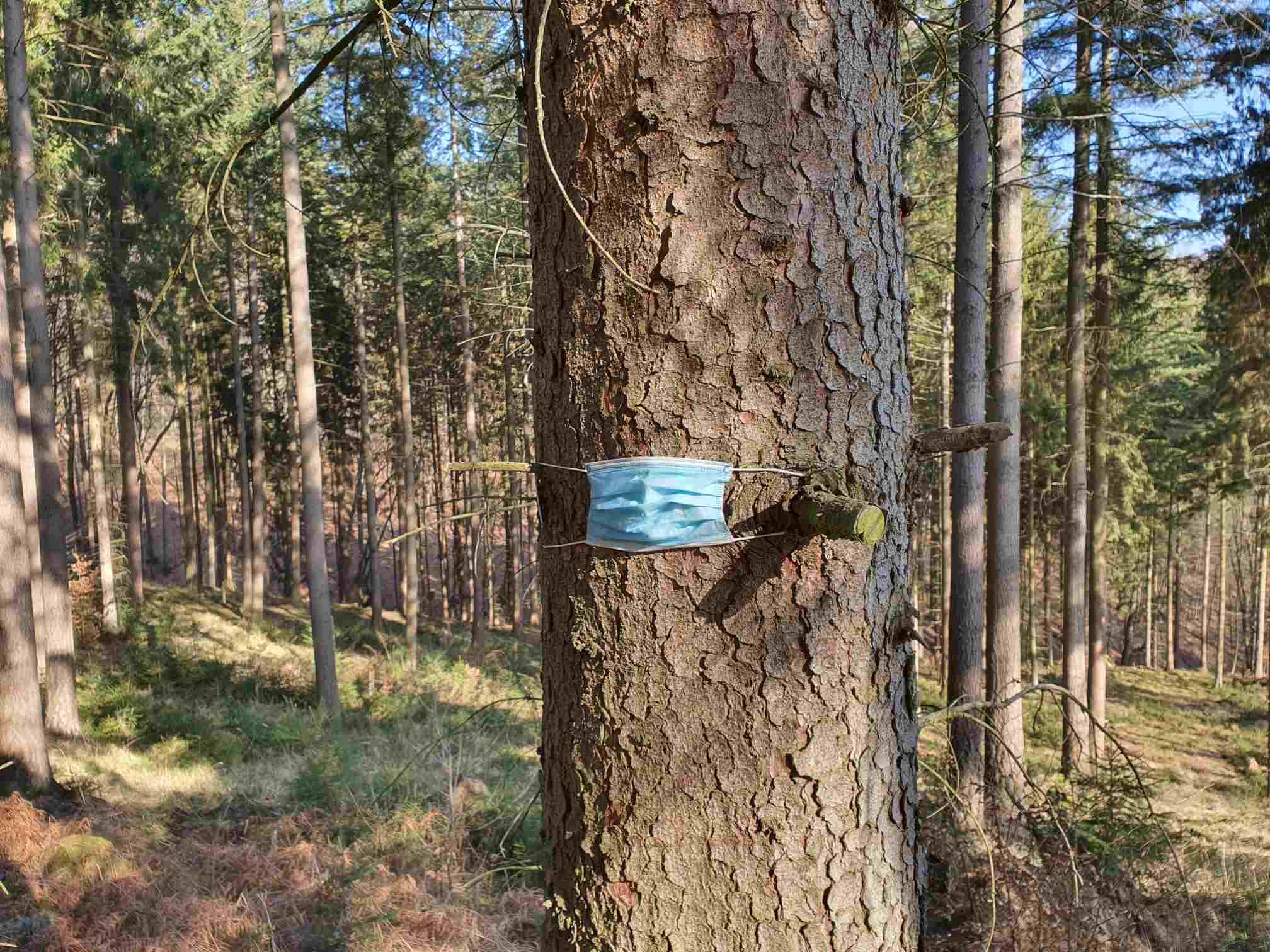Mund-Nase-Maske im Wald