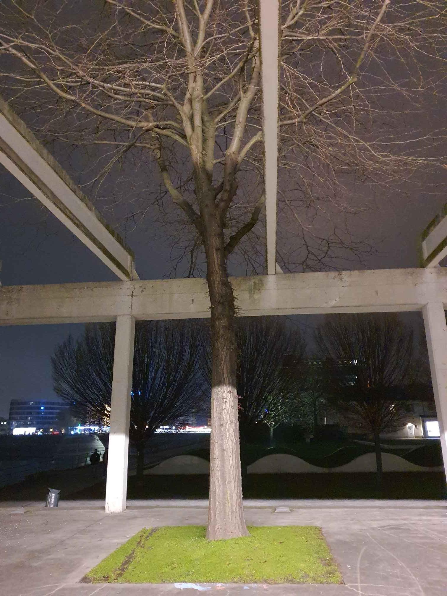 Durchs Dach