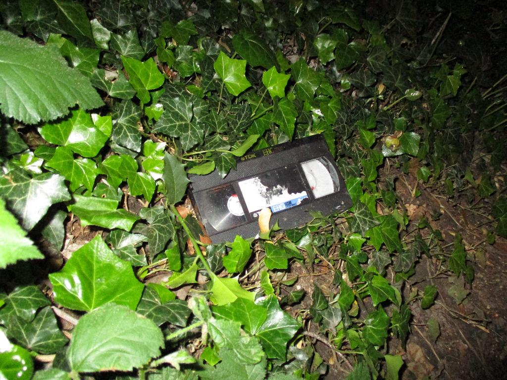 VHS-Kassette im Efeu